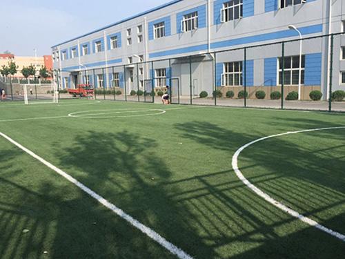 大连开发区金港产业园足球场