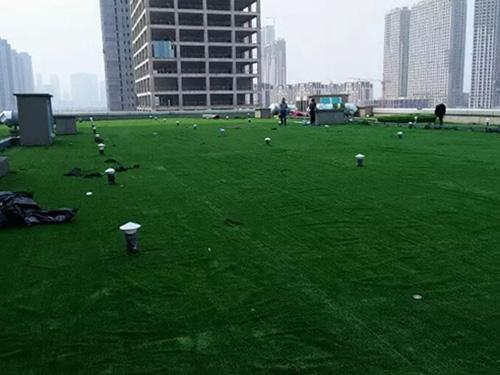 大连国滨苑小区草坪工程