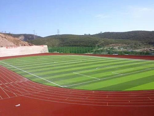 大连开发区财经学院12000平体育工程