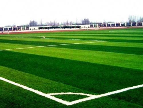 旅顺足球场人造草坪